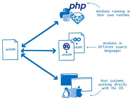 Un diagramme avec un module WASM à droite et trois doubles flèches qui partent vers : des modules PHP/Python/Ruby qui s'exécutent dans leurs environnements ; des modules Rust/Go qui sont écrits avec un autre langage ; des systèmes hôtes qui fonctionnent directement avec le système d'exploitation